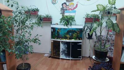 Мой кабинет nachalka.ux